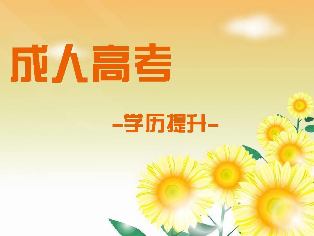云南省成考
