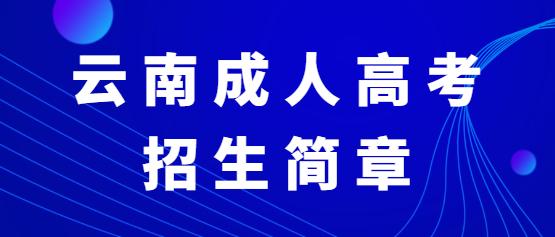 2021年云南经贸外事职业学院成人高考招生简章