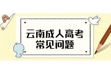 云南省成人高考试题