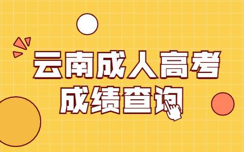 云南成人高考成绩查询