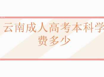 云南成人高考本科