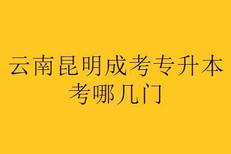 云南昆明成考专升本